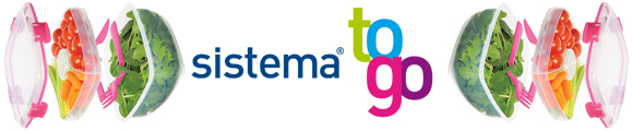 Sistema_TO GO_Banner